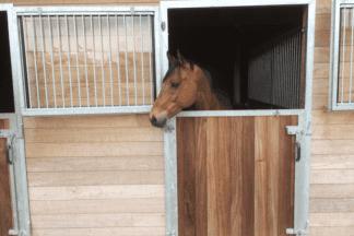 Paardenstal - Stalinrichting